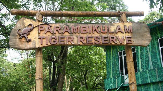 Coimbatore - Parambikulam - Topslip - Coimbatore
